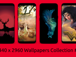 1440-x-2960-wallpapers