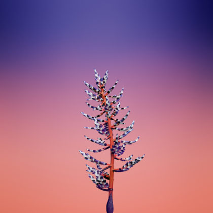 iPhone-X-Stock-Wallpapers