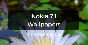Nokia-7.1-Wallpapers